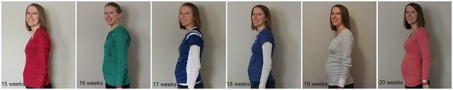 15-20 weeks