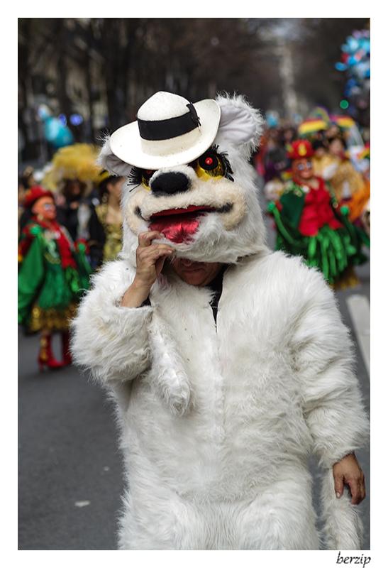 carnaval 2015 à paris 16365113999_587cb2824b_o