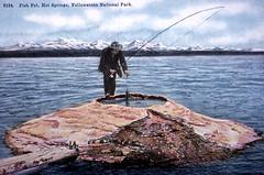 fishing, recreational fishing, shore, fisherman,