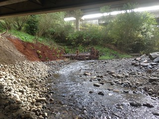SR 18 Taylor Creek - a protected bridge, a rejuventated stream
