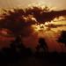 IMG_7623 by Aftab Nazeer