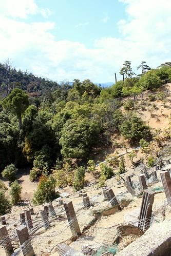 Mount Misen