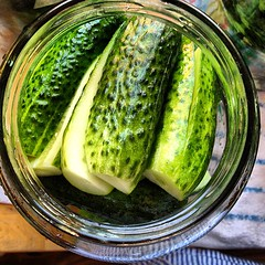 vegetable, pickled cucumber, food, cucumber, gourd,