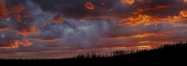 Wyoming Sky over Lodgepole Ridge