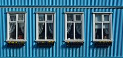 Reykjavik Blue