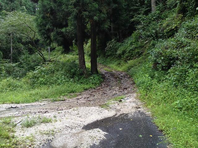 鍋倉山-砂利道へ