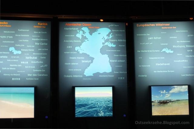 Schautafeln im Ozeaneum