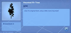 Haunted Fir Tree