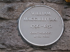 Photo of William MacGillivray yellow plaque