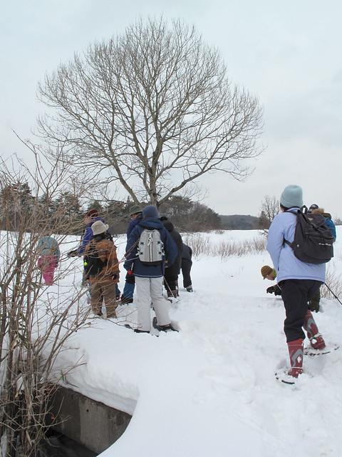 橋の上の積雪を見ると70cmほどだった.
