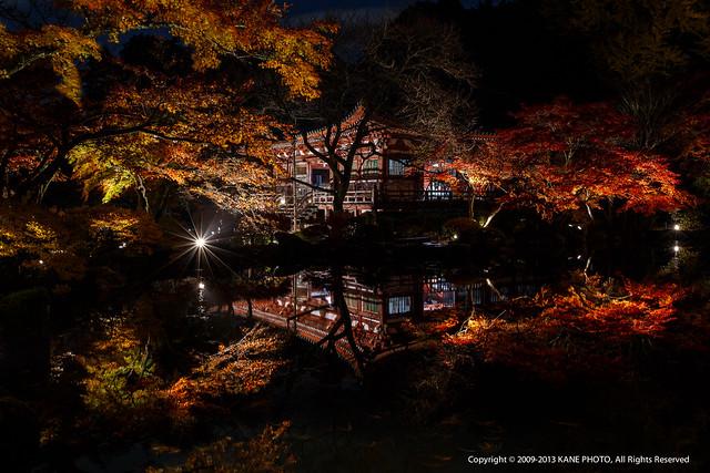 20121126-980C3117-醍醐寺