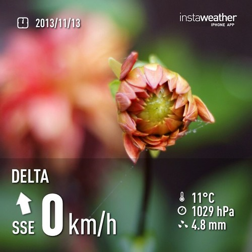 #weather #instaweather #instaweatherpro  #sky #outdoors #nature #world #love #followme #follow #beautiful #instagood #fun #cool #like #life #nice #happy #colorful #photooftheday #amazing #delta #canada #day #autumn #ca ☁️晚上好☕️
