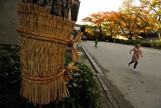 A scene in Osaka Castle.