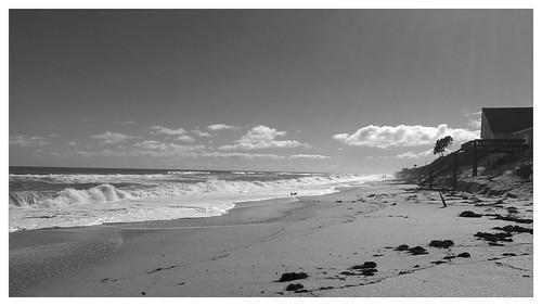 beach florida melbournebeach beachfront sebastianbeachinn flickrandroidapp:filter=panda