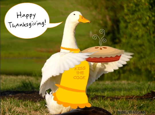 Happy Thanksgiving from Curly!