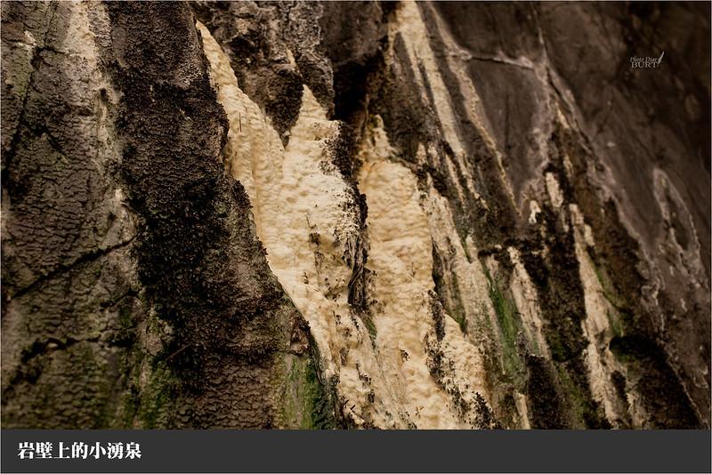 岩壁上的小湧泉
