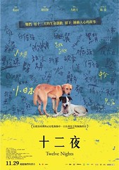 電影《十二夜》引發迴響,動物收容成了顯學。(圖片來源:十二夜劇照)