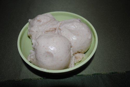 Banana Frozen Yogurt (2)