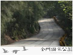 太武山玉章路(新聞稿用圖)