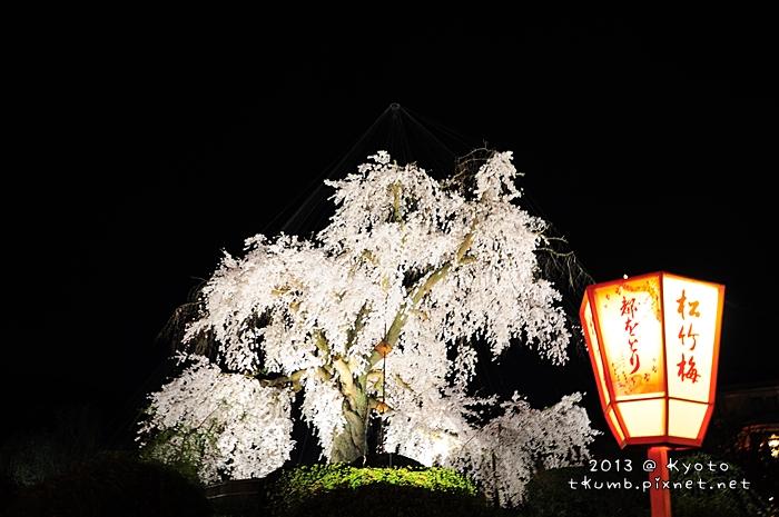円山公園 (5).jpg