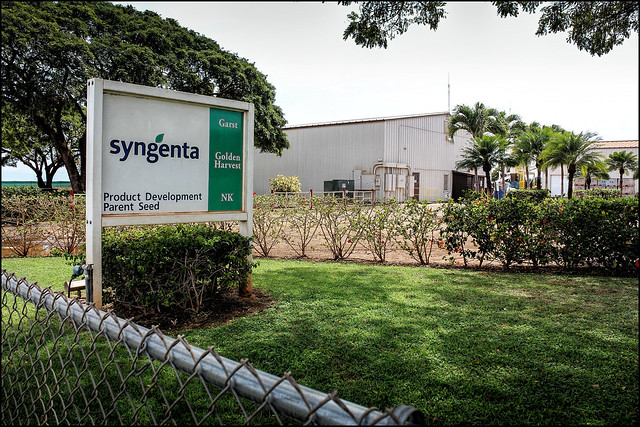 Syngenta on Kauai