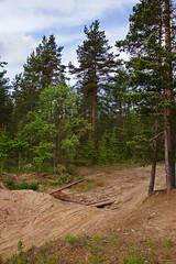 Imgsrc Ru Photos 9797 Free Images