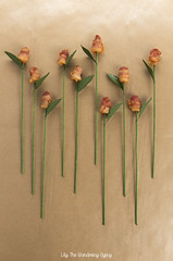 How To Make Bacon Roses