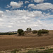 Salamanca to Tordesillas 10