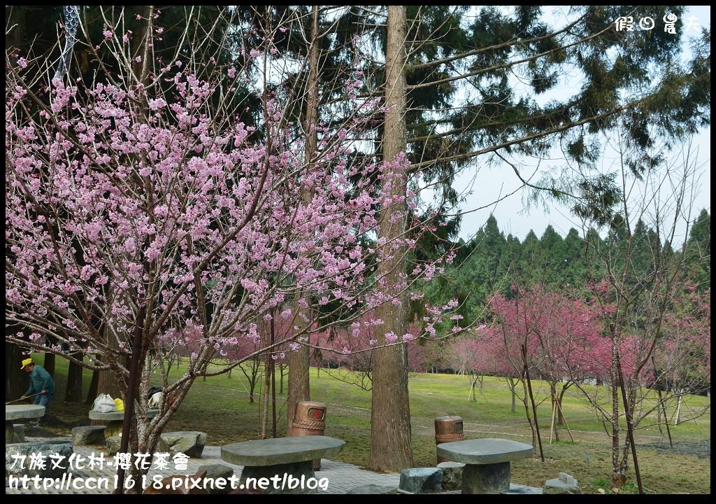 九族文化村-櫻花茶會DSC_4242