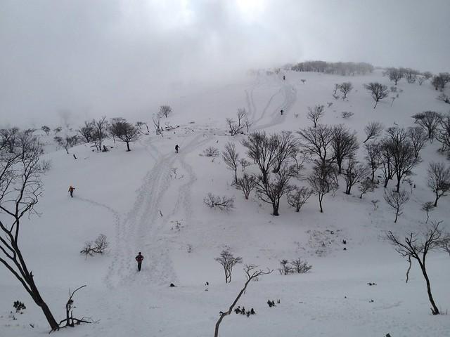 藤原岳 山頂直下の直登