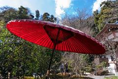 赤い日傘@長谷寺