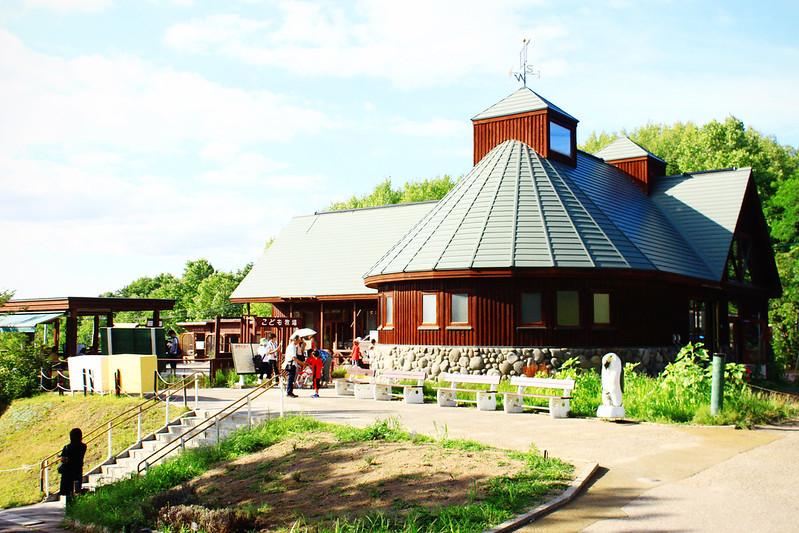 Asahiyama Zoo in summer