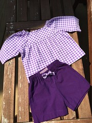 Sunny day shorts and class picnic blouse