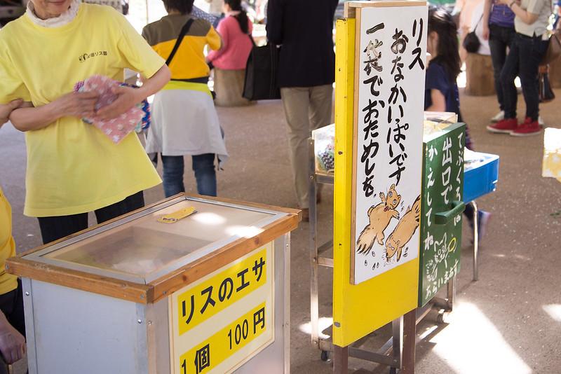 町田リス園-21
