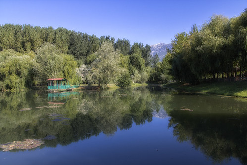 trees lake reflection nature δέντρα φύση λίμνη αντανάκλαση
