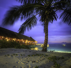 The jetty, Seychelles