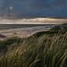 Der Strand von Søndervig by mschroeder_36x24
