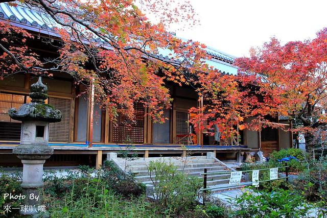 嵐山旅遊景點-常寂光寺26