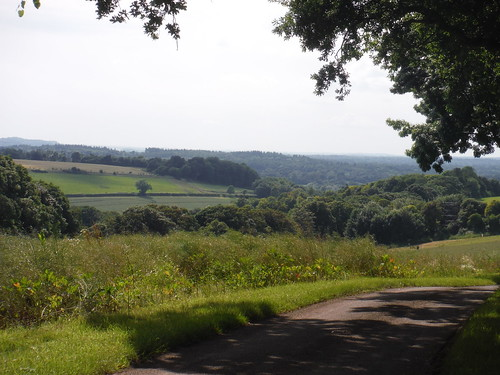 View into Test Valley, from Lower Eldon Farm lane