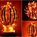 Fiery Globe by Aditi's Odyssey