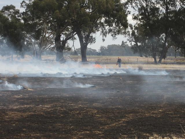 Burning-off at the farm (036)