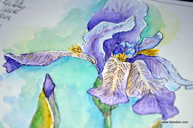 Monet's Blue Iris