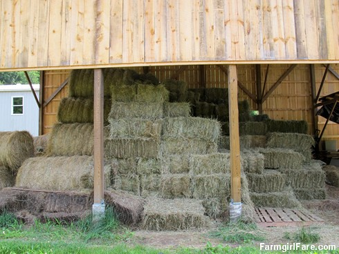 (31-21) Safely in the barn, 330 square bales and 26 big round bales of homegrown organic hay to feed the sheep and donkeys through the winter and into next spring - FarmgirlFare.com