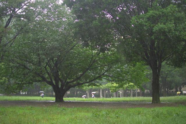 東京路地裏散歩 rainy day