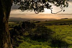 Sundown on the Moorlands