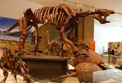 sculpture(0.0), tourist attraction(1.0), art(1.0), ancient history(1.0), museum(1.0), dinosaur(1.0),