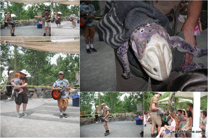 Baby-Dino-Field-Station-Dinosaurs-13