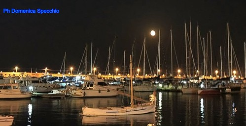 Manfredonia by night by Domenica Specchio