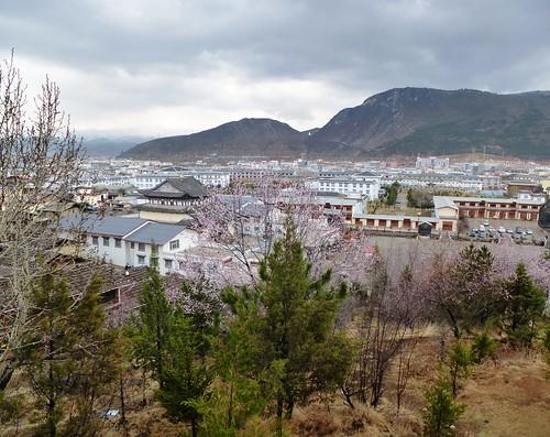 Yunnan13-Shangri La (22)