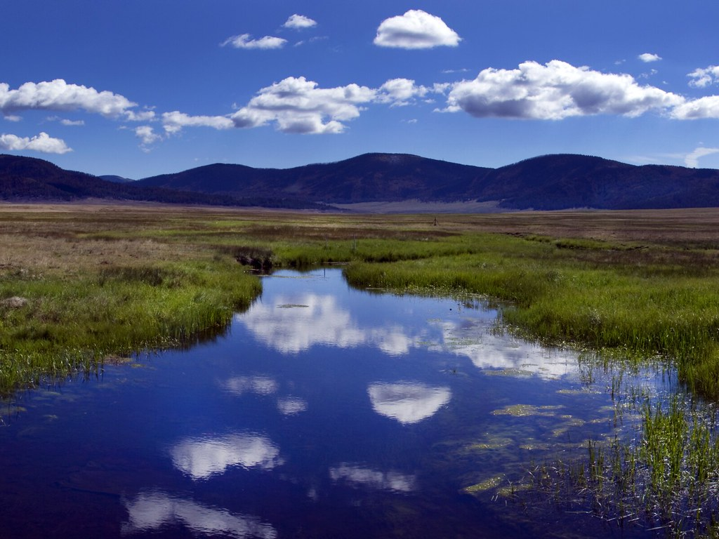 Reflection in the Valles Caldera
